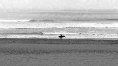 Surfer in the Morning (Sherif Salama) Tags: blackandwhite bw beach monochrome landscape surf moody surfer surfing huntingtonbeach