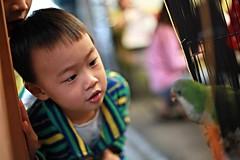 IMG_6847.jpg (小賴賴的相簿) Tags: family canon 50mm kid taiwan stm 台灣 台北 小孩 小朋友 親子 木柵 孩子 家樂福 新店 chrild 5d2 anlong77 anlong89 小賴賴 小賴賴的相簿
