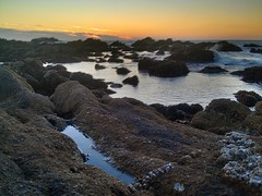 the west, Point Pinos, Pacific Grove, December 8, 2013 (1) (/\/\ichael Patric|{) Tags: ocean california sunset rock stone geotagged rocks december waterfront rocky montereybay shore granite montereycounty geology pacificgrove intertidal centralcoast tidepools lateafternoon pointpinos oceanfront geological montereypeninsula michaelpatrick pacificgrovecalifornia 2013 montereybayarea address:continent=northamerica address:country=unitedstatesofamerica address:state=california montereycountycalifornia address:city=pacificgrove address:postalcode=93950 december2013 prohdrcamera address:street=sunsetdrive geo:lat=36636 geo:lon=121937