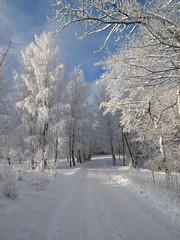Sigulda, Latvia. Photo by Zigurdszakis (flickr)