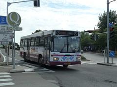 85-072-01 (58800) (Elad283) Tags: bus mercedesbenz haifa ישראל egged אוטובוס o405 אגד haargaz eggedbus 58800 mercedesbenzbus israelbus o405f 8507201