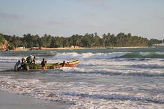 AJY_3084 (arika.otomamay) Tags: beach srilanka trincomalee