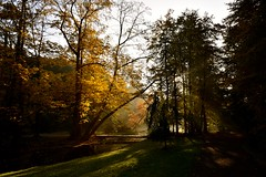 Park Sonsbeek (marcoderksen) Tags: park arnhem herfst sonsbeek 2015 najaar