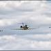 Challenger CL-601 + Gripen