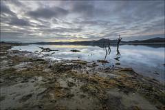 Calma... (Jose Cantorna) Tags: agua nikon pantano amanecer nubes alava euskadi horizonte araba huellas d610