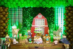 FAZENDINHA DO TULIO 2015 FINAL-3 (agencia2erres) Tags: aniversario 1 infantil festa ano fazenda fazendinha