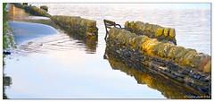 Rising water level (mistinguette.mistinguette) Tags: reflection water weather wall bench flood lochlomond trossach