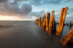Old groynes (Fantastist) Tags: ostsee graswarder naturschutz buhnen groynes strand beach baltic sea clouds wolken sky himmel blue water meer heiligenhafen