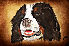 Maximus (patrick.verstappen) Tags: dog pet animal max texture textured twitter ipernity ipiccy image photo picassa pat portrait paper pinterest painting picmonkey painted aquarelle art watercolor acryl flickr facebook belgium gingelom nikon d7100 portret inkt fabriano bernersennen