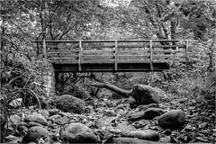 Deepdale . (wayman2011) Tags: fujifilmx70 lightroom wayman2011 bwlandscapes mono bridges footbridges streams becks rocks trees woodland pennines dales teesdale deepdale barnardcastle countydurham uk