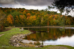 Rugg Pond . . . (Dr. Farnsworth) Tags: ruggpond valleyroad trees colors pond swans raindrops dam path parking fernridge mi michigan fall october2016