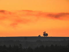 (Claude@Munich) Tags: germany bavaria upperbavaria sunset dusk dawn sky tree orange black vastness claudemunich bayern oberbayern bad tlzwolfratshausen egling ergertshausen sonnenuntergang dmmerung baum