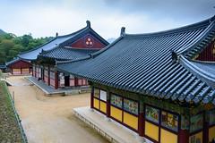 Korea_2016-55.jpg
