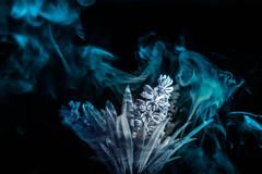 Smoke on clouds (Giorgini Luca) Tags: double exposure doppia esposizione fumo smoke oggetto blue cold freddo colori colore freddi experiment esperimento still life