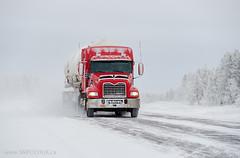 A mobile snowstorm (Stephen M. Fochuk) Tags: westcanbulktransport nwt northwestterritories macktruck winter snow highway