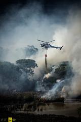 Incendio platamona (3) (Autolavaggiobatman) Tags: pineta elicottero stagno fiamme fumo mare sardegna canadair incendio platamona