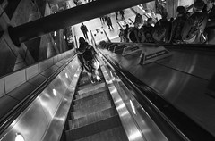 47/52 - Vanishing Point (stopdead2012) Tags: 52weeksofphotography london westminster tube down escalator monochrome