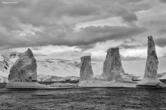 Cathedral Iceberg (naturalturn) Tags: ice glacier iceberg mountain mountains ocean southern southernocean water snow infrared blackwhite blackandwhite dallmannbay dallmann bay palmerarchipelago antarctica image:rating=5 image:id=190338