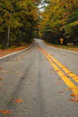 double yellow (brown_theo) Tags: autumn fall road double yellow line two lane blacktop hocking hills ohio ash cave