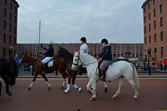 crossing the bridge at the Albert Dock (napoleon666uk) Tags: liverpool international horse festival liverpoolinternationalhorsefestival horseshow echoarena animal parade