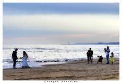 sposi sulla spiaggia (Giorgio Serodine) Tags: marina brussa venezia sposi fotografo persone mare spiaggia sabbia cielo orizzonte onde canon tele allaperto