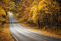 Autumn [11.03.16] (Andrew H Wagner | AHWagner Photo) Tags: 5dmk3 5d3 5dmkiii 5dmarkiii 5dmark3 ultrawideangle wideangle canon eos 1635l 1635mm f4 f4l is usm nature autumn fall landscape trees tree mountains valley outdoors explore exploration exploring hiking shenandoah national park shenandoahnationalpark nationalpark virginia va skylinedrive mountain summit road gorgeous pretty beautiful colors