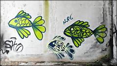 Coimbra 2016 - Sociedade de Porcelanas 04 (Markus Lske) Tags: portugal coimbra sociedadedeporcelanas graffiti graffito kunst arte art streetart lueske lske