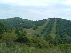 Ltkp a Kis-k oldalbl (ossian71) Tags: magyarorszg hungary mtra termszet nature tjkp landscape hegy mountain