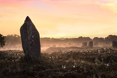 Les alignements de Kermario (Faouic) Tags: france morbihan bretagne carnac alignements menhirs mgalithes brume leverdesoleil