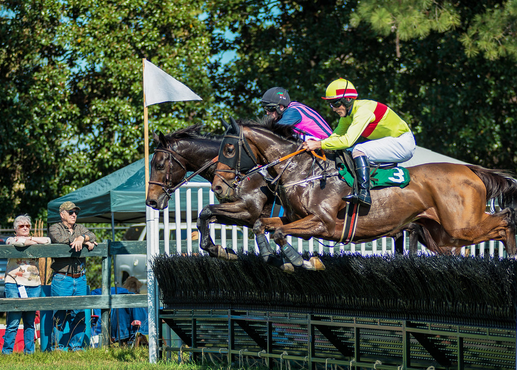 The world 39 s best photos of aiken and steeplechase flickr for Steeplechase