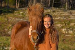 Freinds (Toftus Photography) Tags: troms norge no hky grd troms horse hest sunsett sun autumn beauty beautiful colors color farve woman girl jente pige female femme femelle femenino vakker smuk hst efterr icelandic