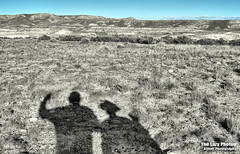Nov 10 2016 - Greetings from the Big Horn Basin outlands [Explore] (lazy_photog) Tags: lazy photog elliott photography worland wyoming john cuca ruth badlands big horn basin desert shadows selective color 111016fifteenmilewithpepper