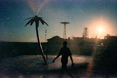 ... (░▒▓█ Piero Donadeo █▓▒░) Tags: 35mmfilm 35mm analog adox adoxcolorimplosion sun summertime beach yashicat4 yashica coneyisland nyc backlitshot silhouette palm grain filmgrain