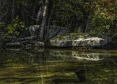 Echo (keith_shuley) Tags: reflections bullcreek austin texas fall water olympus