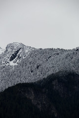Layer (Mason Aldridge) Tags: canon 6d ff magicdrainpipe 80200 8020028 f28 70200 zoom fullframe eos mountain mountains canada britishcolumbia bc fraservalley snow winteriscoming november snowline coquihalla highway1 landscape trees rockies