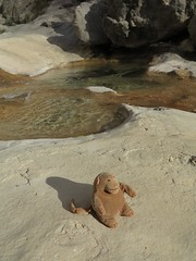 squeezemonkey by the rockpools (squeezemonkey) Tags: catalunya abelladelaconca squeezemonkey toy rockpools water stream