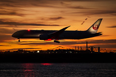 Japan Airlines (cvillandry (Instagram & Twitter @cvillandry)) Tags: travel airplane aviation boston loganairport skyline sunset toursim boeing dreamliner 787 jal japan