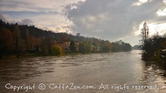Torino (18) (cattazen.com) Tags: alluvione torino po esondazione parcodelvalentino murazzi pienadelpo cittàditorino turin piemonte