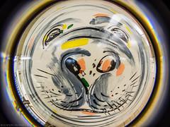 Tube Face for Monday (katrin glaesmann) Tags: ubahnhof metro tube station workshop frankfurt zoo mondayfacecircularfisheyefun cff lensbaby seal seehund