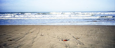 03-01 ES novo well strand minim stillleb 3 ag10-065 (u ki11 ulrich kracke) Tags: brandung es flucht gegenspiel horizont minimal novostpetri sand spuren strand strandgut welle
