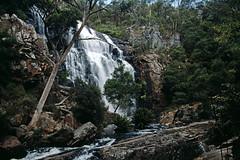 Mackenzie Falls, Victoria (Stefan Fisher) Tags: kodakektachrome outdoor downunder scanned oz abandoned waterfall 35mm nationalpark florida landscape minoltaxd7 mackenziefalls grampians victoria