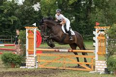 DSC00752_s (AndiP66) Tags: springen sonntag sunday 9august2015 langenthal 2015 august pferd horse schweiz switzerland kantonbern cantonofbern concours contest wettbewerb horsejumping springreiten pferdespringen equestrian sports pferdesport sport sony sonyalpha 77markii 77ii 77m2 a77ii alpha ilca77m2 slta77ii sony70400mm f456 sony70400mmf456gssmii sal70400g2 andreaspeters bern ch