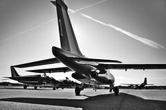 Patrouille de France (MamzelAmanda) Tags: tarmac avion alphajet patrouilledefrance lannion