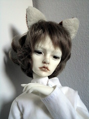 Caspar, with cat ears (MitisFeles) Tags: cat ears bjd nekomimi freddy1 dollzone
