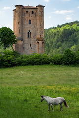 Fairytale - France, Pyranees (Nomadic Vision Photography) Tags: france castle fairytale ruins frame historical touristattraction catharcastle pyranees jonreid tinareid nomadicvisioncom communeofarques