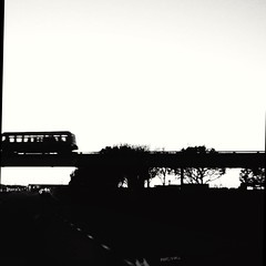 ORD's T5 train (williamw60640) Tags: trees sunset blackandwhite chicago highway overpass viaduct ord terminal5 elevatedtrain ohareinternationalairport