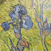 Vincent Van Gough - Iris - national gallery of canada 081