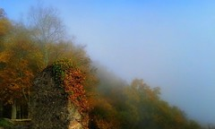 Une ruine en automne (mamietherese1) Tags: world100f phvalue