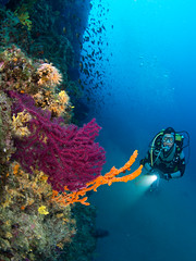 Tauchen in Kroatien 2015 (Knipsbildchenknipser) Tags: sea uw mediterranean croatia scuba diving krk kroatien tauchen unterwasser mittelmeer