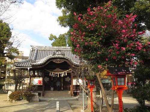 午後の神社